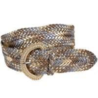 Gürtel Snake (Schlange)